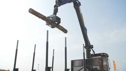 Log loader or forestry machine moves fresh cut logs for loading