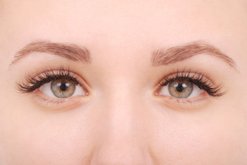 Beautiful woman eyes with long eyelashes.  Studio shot