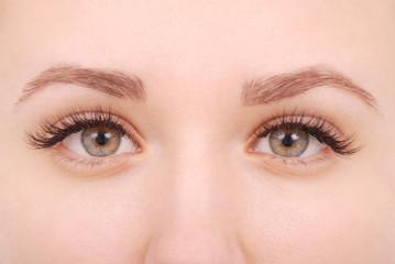 Beautiful woman eyes with long eyelashes.  Studio shot