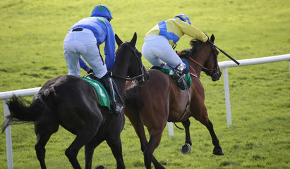 Two race horses and jockeys competing in a race