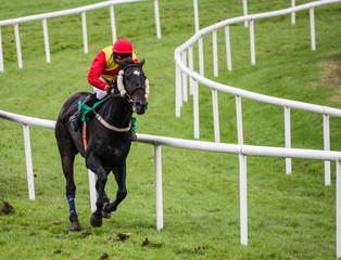 single race horse and jockey galloping on the track