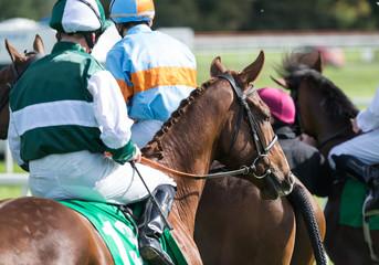 Racehorses and jockeys on the racetrack before a race
