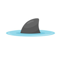 Shark fin out of water vector