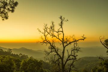 Beautiful Sun rise in Thailand, Chiangmai