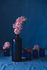 Lilac in old blue bottle