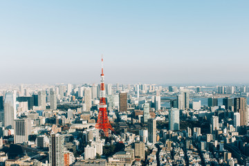 Tokyo Cityscape With Tokyo Tower on Sunny Day