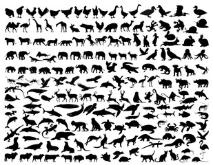 a collection of animal silhouettes