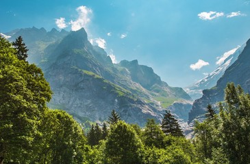 Wall Mural - Alpine Summer Scenery