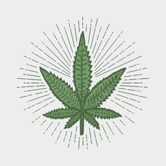 Cannabis leaf print. Marijuana stamp with sunray. Label in vintage hipster style. Graphic design for clothes, t-shirt, apparel, logo. Vector illustration.