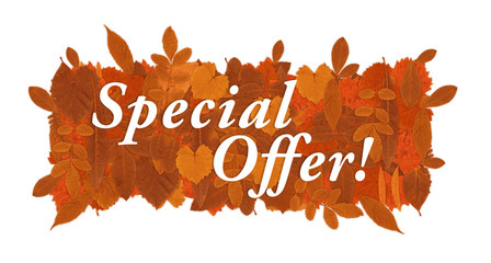 Fall Special offer sign