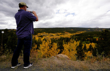 A man shoots a picture of Aspen trees turned gold on the Autumn Equinox in the northern hemisphere near Nederland