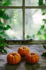 3 small pumpkins
