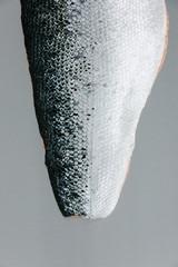 Detail of salmon fillet skin on grey