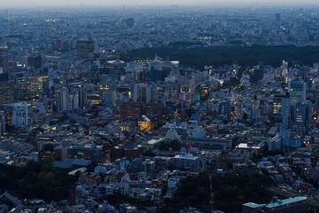 東京の夜景風景