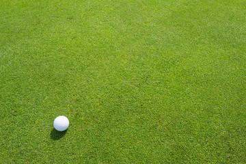 ゴルフ パッティンググリーン