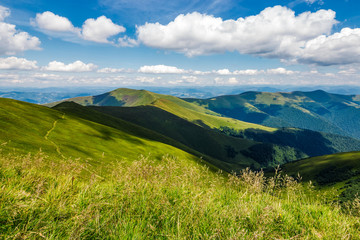 grassy meadow on hillside of great mountain ridge in summer. gorgeous landscape in fine weather under blue sky with cloud