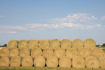 Large round, golden hay bales stacked in rows and photographed from the front in natural light. Blue sky with several clouds are in the background.