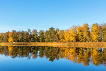 View on a lake with reflections of autumn colored forest