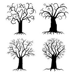 Trees, shapes