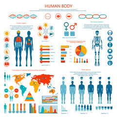 Concept of Human Body Colored Infographic Cartoon