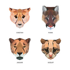 Vector polygonal animals isolated on white. Low poly cats illustration. Color vector simple predators image.