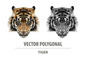 Vector polygonal tiger head. Low poly predator illustration. Triangle simple color image.