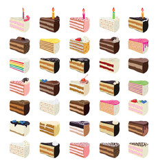 vector sweet cake slices