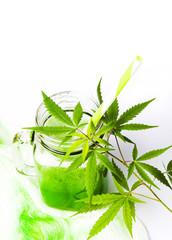 Green marijuana juice on white