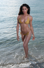 Dark haired woman at the beach