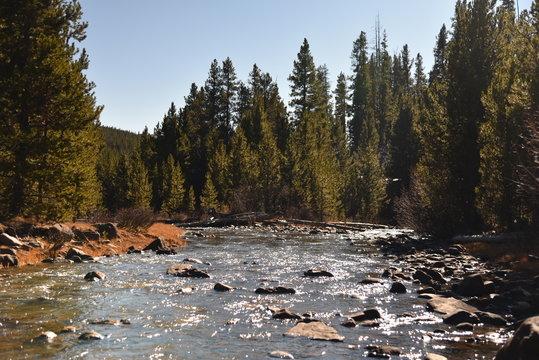 Mountain Stream. Ashley National Forest, Utah