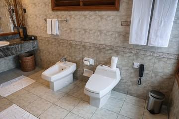 Interior of modern bathroom in hotel