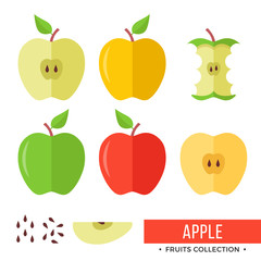 Apple. Yellow, green, red whole apples and parts, slices, seeds, leaves, core. Set of fruits. Flat design graphic elements. Vector illustration