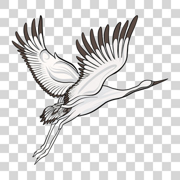 Japanese crane isolated drawing. Stock vector illustration.
