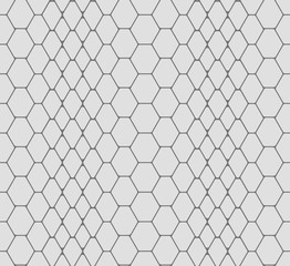 vector seamless texture of snake skin