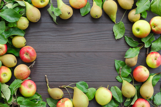 Frame of apples and pears on dark wooden background