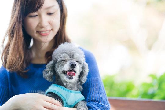 犬の散歩、女性、ベンチ、笑顔、笑う