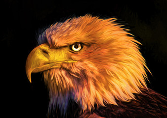 Eagle. Painting on canvas.