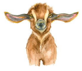 Watercolor Goat head