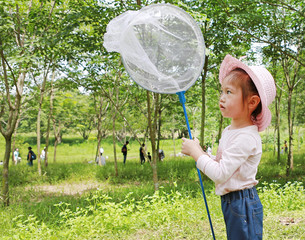 Little asian girl playing in a field with insect net in summer.