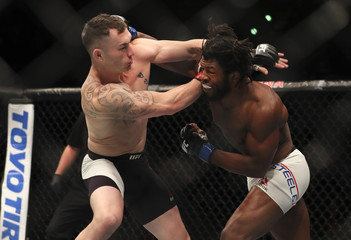 MMA: UFC Fight Night-Auckland Jumeau vs Steele