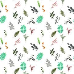 Tropical elements: Agonis, Eucalyptus, Annona, Balata, Zamiokulkas, Cissus. seamless pattern. Vector Illustration.