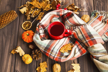 Flatlay of cozy fall setting. Scarf with tea cup and autumn decorations with pumpkins, dried leaves, pine cones