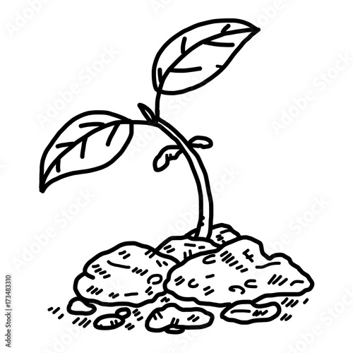 Plant Sprout Cartoon Vector And Illustration Black And White