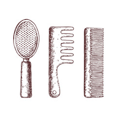 Hair combs on white background, sketch illustration. Vector