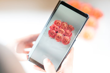 women hand taking a photo of limited roses by mobile phone