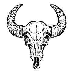 Illustration of buffalo skull isolated on white background.