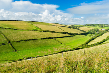 Wall Mural - Devon Countryside Views