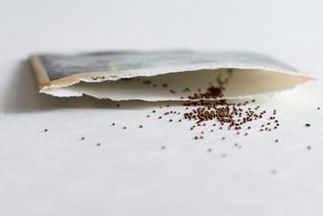 Sweet Marjoram Seeds