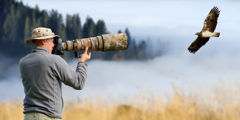 Professional wildlife photographer