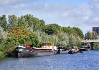Old barges moored in a canal with lush green vegetation, Tilburg, Netherlands